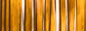Sidebar_010d9f9b-bc3a-435f-8226-e491fdac65e6