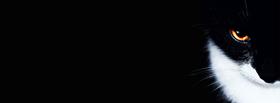 Sidebar_f4d09fef-52e6-406b-be47-9675944b6581