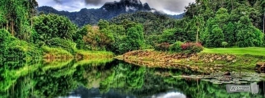 floresta e lago